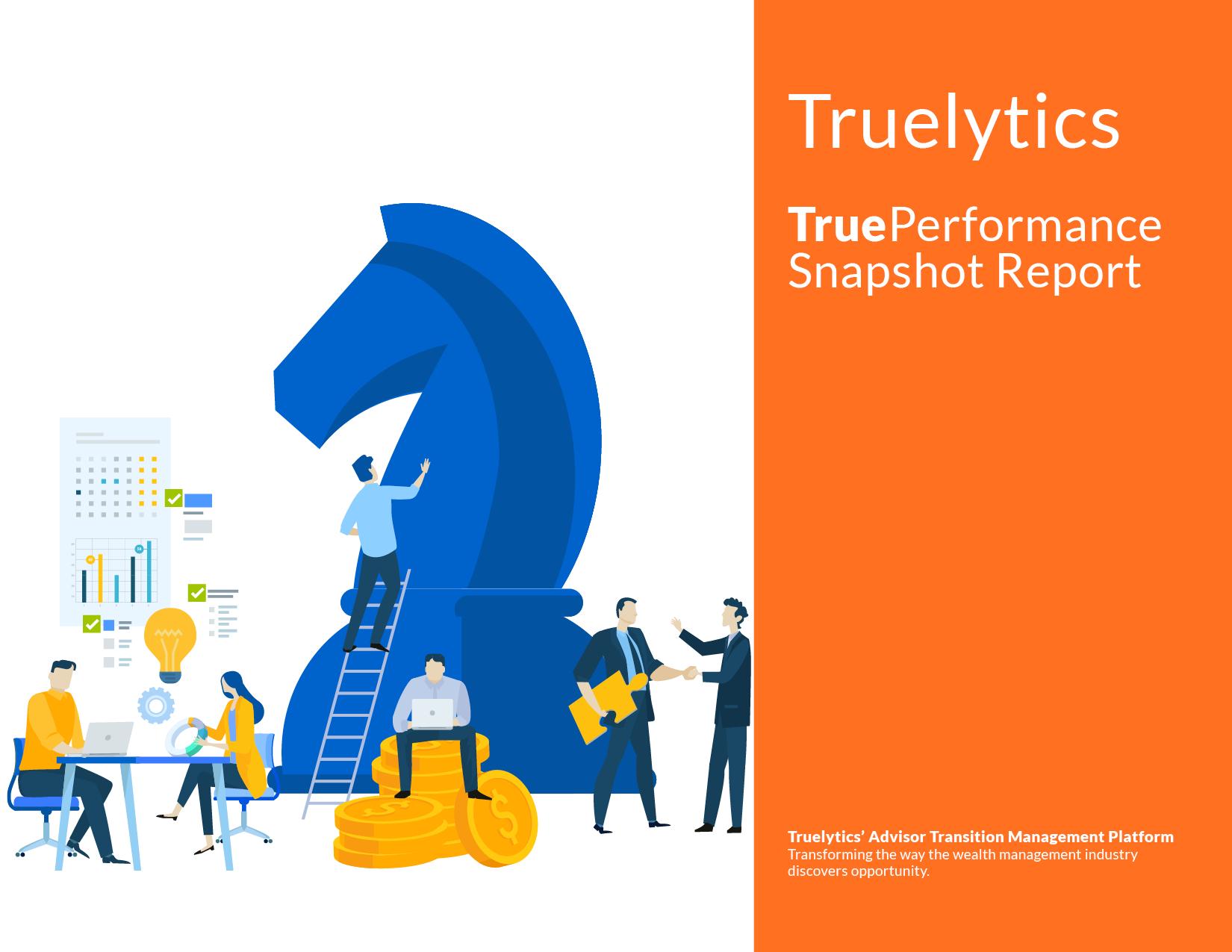 Truelytics-Snapshot-Report-V2b